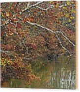 Fall Along West Fork River Wood Print by Thomas R Fletcher