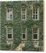 Ivy League Wood Print by John Greim