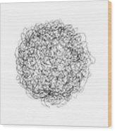 Line 4 Wood Print by Rozita Fogelman