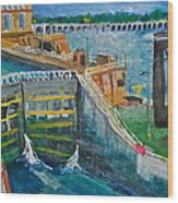Lock And Dam 19 Wood Print by Jame Hayes