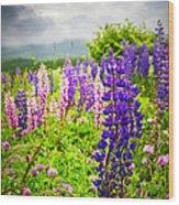Lupins In Newfoundland Meadow Wood Print by Elena Elisseeva