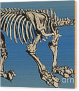 Megatherium Extinct Ground Sloth Wood Print by Science Source