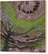 Orb Wood Print by Jean Noren