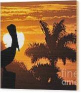 Pelican At Sunset Wood Print by Dan Friend
