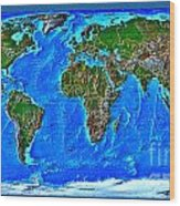 Physical Map Of The World Wood Print by Theodora Brown
