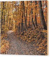 Ramble On Wood Print by Bill Cannon