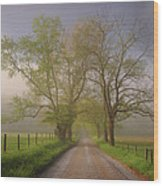 Sparks Lane Wood Print by Joseph Rossbach