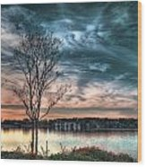 Sunset Over Canebrake Wood Print by Brenda Bryant
