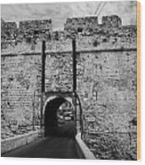 The Porta Di Limisso The Old Land Gate In The Old City Walls Famagusta Turkish Republic Cyprus Wood Print by Joe Fox