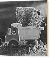 Toy Truck Planter Wood Print by Gordon Wood
