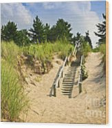 Wooden Stairs Over Dunes At Beach Wood Print by Elena Elisseeva