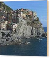 Manarola Wood Print by Barbara Walsh