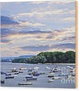 River Boats On Danube Wood Print by Elena Elisseeva