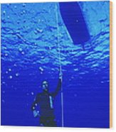 Free-diver Wood Print by Alexis Rosenfeld