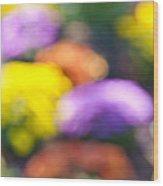 Flower Garden In Sunshine Wood Print by Elena Elisseeva
