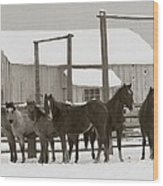 71 Ranch Wood Print by Diane Bohna