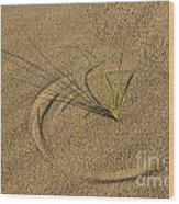 A Compass In The Sand Wood Print by Susan Candelario