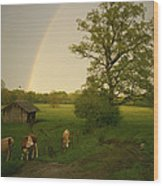 A Double Rainbow Arcs Over A Field Wood Print by Carsten Peter
