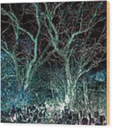 A Ghost Story Told On March Road Wood Print by Louis Nugent