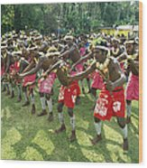 A Group Of New Guinean Men Performing Wood Print by Klaus Nigge