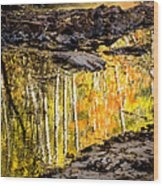 A Moment Of Reflection Wood Print by Mary Amerman
