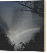 A Rainbow Arcs Across Victoria Falls Wood Print by James L. Stanfield