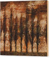 Absolution Wood Print by Brett Pfister