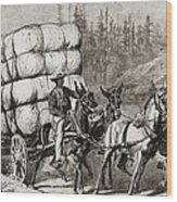 African American Teamster Transporting Wood Print by Everett