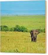 African Elephant In The Wild Wood Print by Anna Om