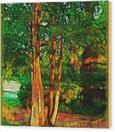 Afternoon Delight Wood Print by Judi Bagwell