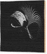 Alien Mask Wood Print by Skip Nall