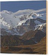Allardyce Range, Cumberland East Bay Wood Print by Ingo Arndt