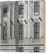 Alte Bibliothek Wood Print by RicardMN Photography