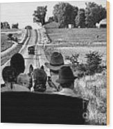 Amish Family Outing Wood Print by Julie Dant