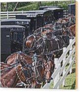 Amish Parking Lot Wood Print by Tom Mc Nemar