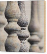 Ancient Spindles Wood Print by Terry Ellis