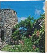 Annaberg Ruins Wood Print by Kathy Yates