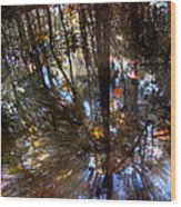 Anomaly  Wood Print by Tammy Cantrell