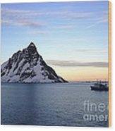 Antarctica Wood Print by Karen Kean