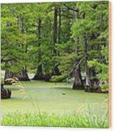 Arkansas Lake With Cypresses Wood Print by Carol Groenen