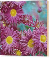 Asters Wood Print by Marcio Faustino