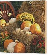 Autumn Bounty Wood Print by Kathy Clark