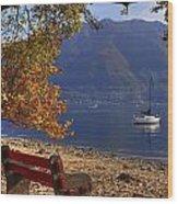 Autumn Wood Print by Joana Kruse