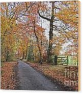 Autumn Leaves Wood Print by Harold Nuttall