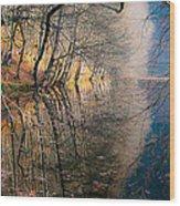 Autumn Wood Print by Okan YILMAZ