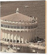 Avalon Casino In Sepia Wood Print by Paula Greenlee