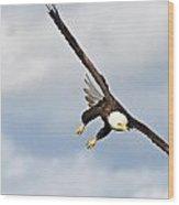 Bald Eagle Wood Print by Brandon Broderick