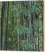 Bamboo Tree Wood Print by Athena Mckinzie