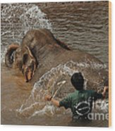 Bath Time In Laos Wood Print by Bob Christopher