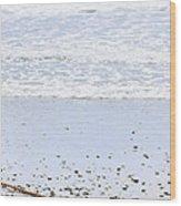 Beach Detail On Pacific Ocean Coast Wood Print by Elena Elisseeva